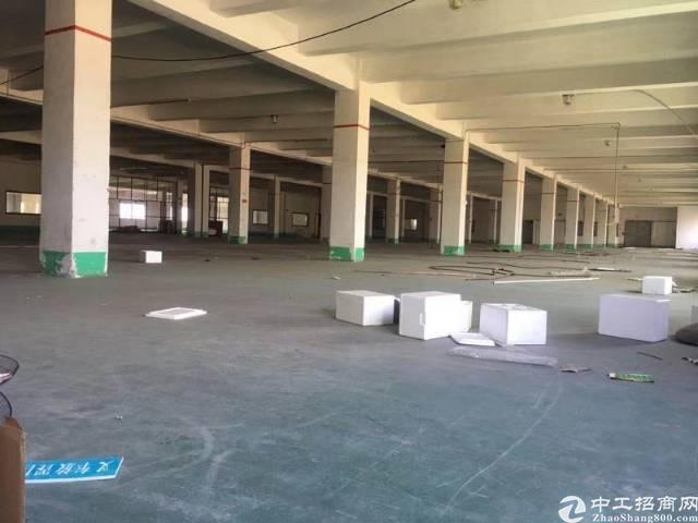 龙华沈海高速出口物流园新出3000平方带有卸货出租