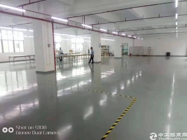 龙华龙大高速出口500平精装修原房东厂房仅租25