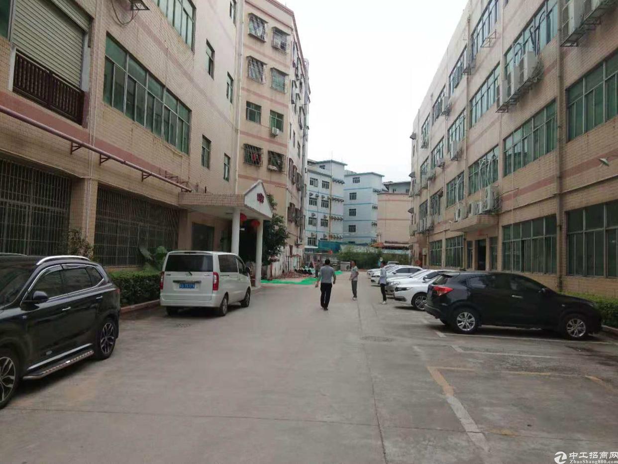 观澜章阁观光路旁大型工业区出一楼带消防喷淋标准厂房1100平