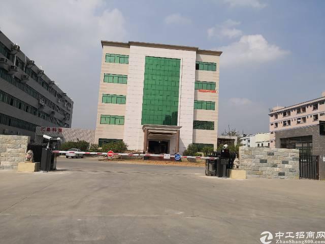 虎门原房东标准办公楼出租4000平租11元有豪华装修水电齐全