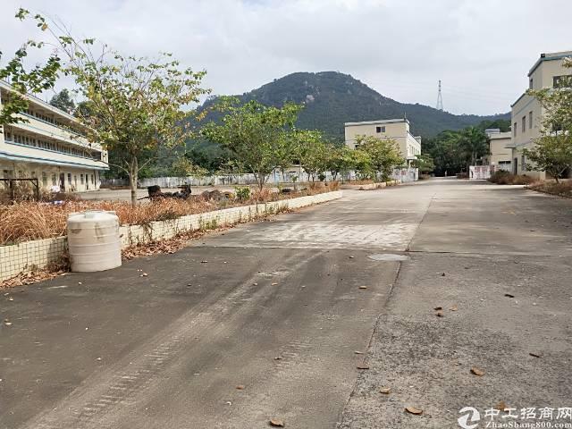 陈江镇带食品证独院六栋各两层厂房共计21000平方
