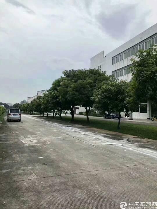福永沿江高速口新出独栋三层可分租带红本