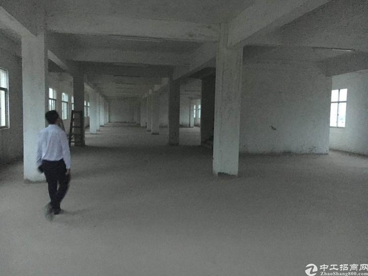 小金口成熟工业区仓库出租。独院,场地大-图2