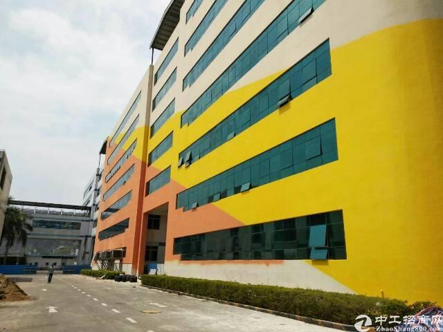 西丽百旺信科技园总面积2万平方,大小可以分租