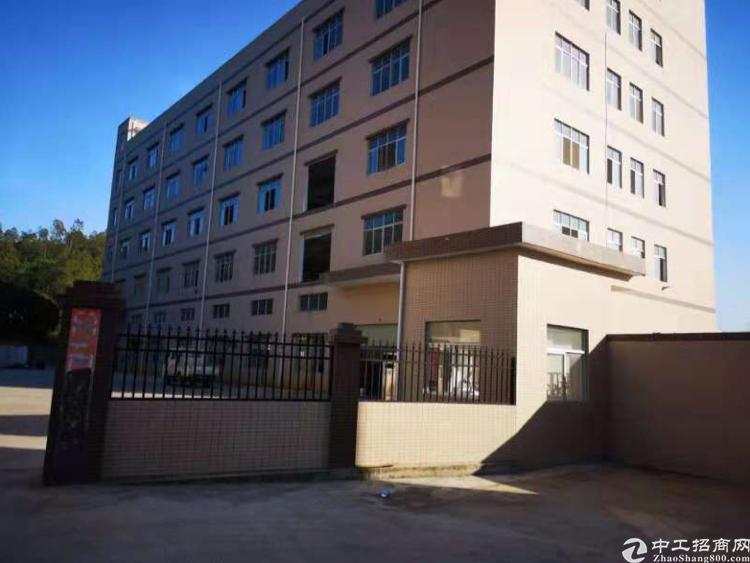惠阳高速入口旁原房东独院标准厂房7900平方形象好空地大