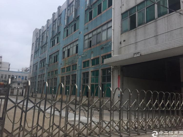 沙井万丰附近新出独门独院厂房5000平方红本厂房出租