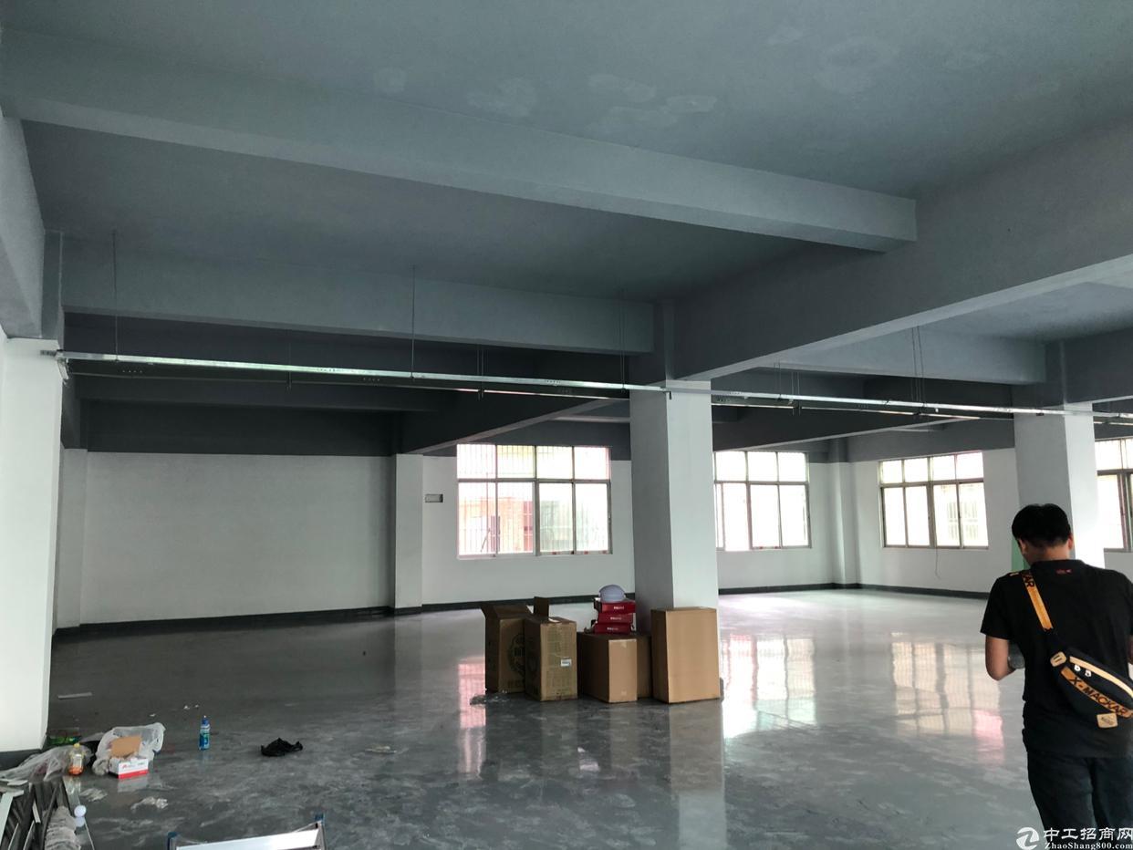 坂田第三工业区新装厂房1250平