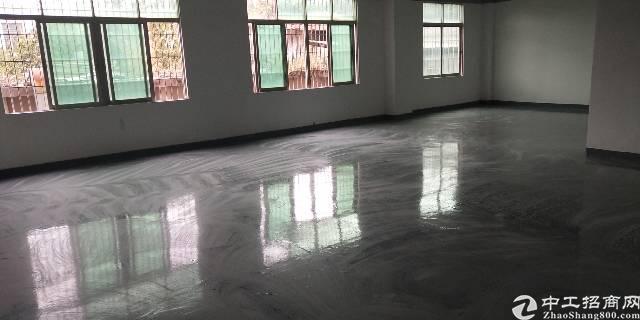 布吉丹竹头地铁附近新出楼上带装修2000平厂房出租可分租