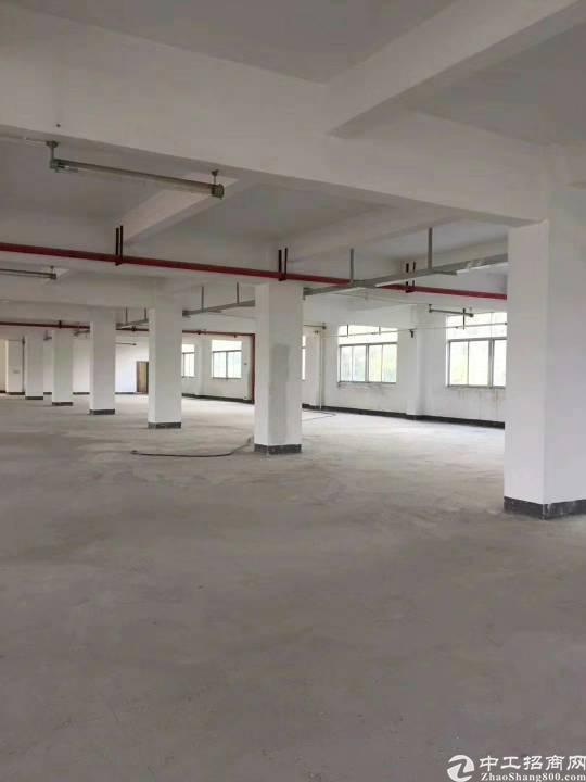 沙井107国道边工业区红本厂房总面积12800平!
