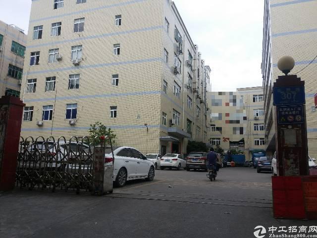 大浪劳动者广场附近1-4层6000平方出租,可分租,19元
