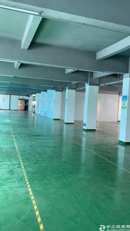 新出平湖大望工业区二楼1000平带装修厂房出租