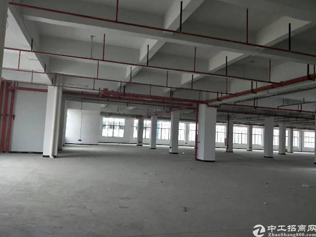 水口东江高新区2楼3000平方厂房出租,租金12元