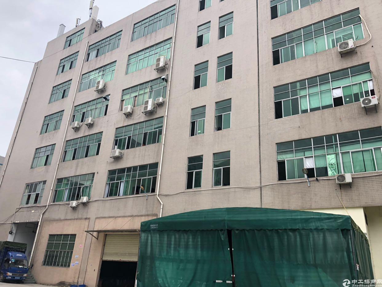 坑梓秀新楼上1380平米 带消防喷淋大小分租