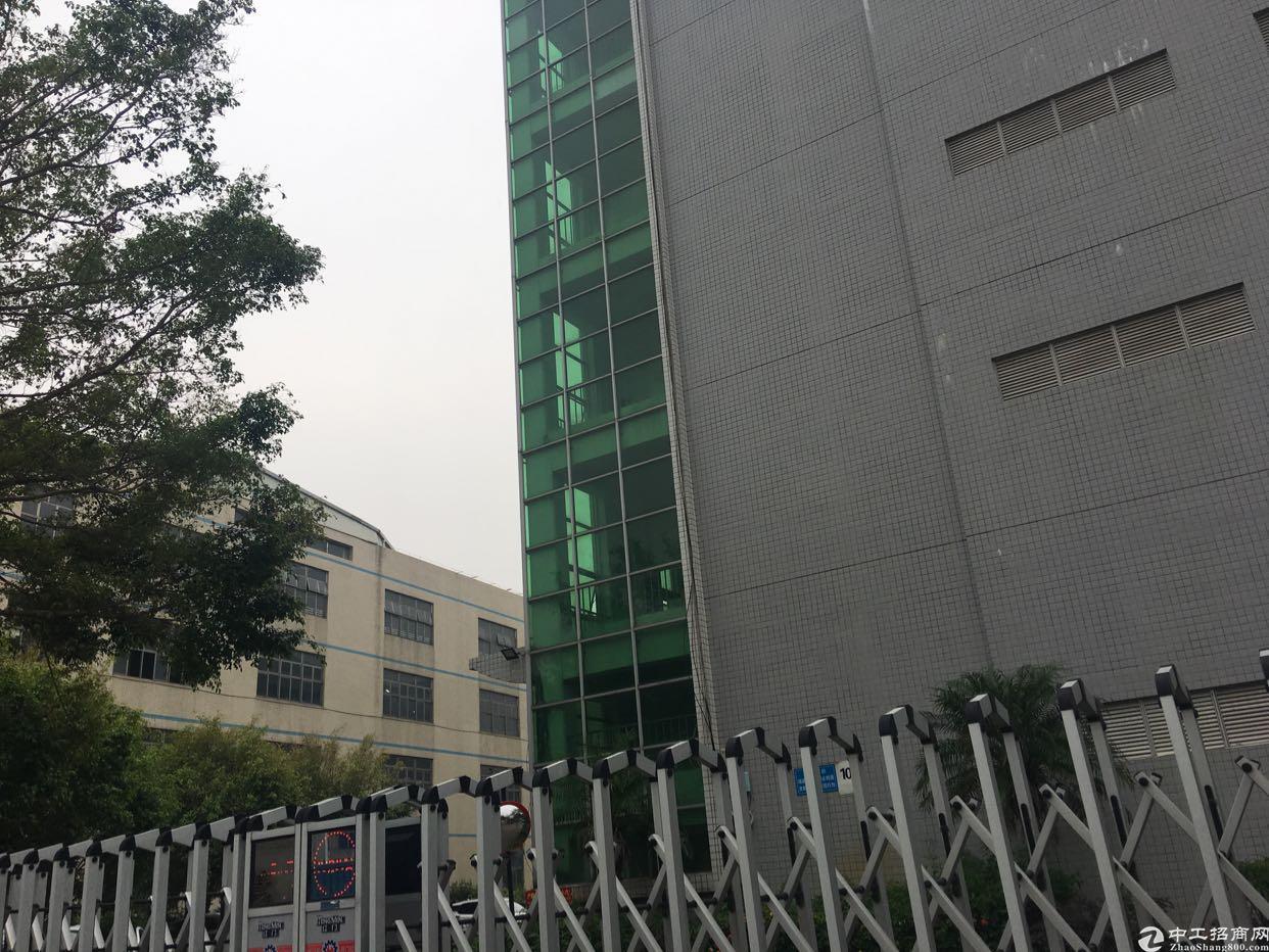 西丽白芒关口新出厂房1280平方米,交通便利