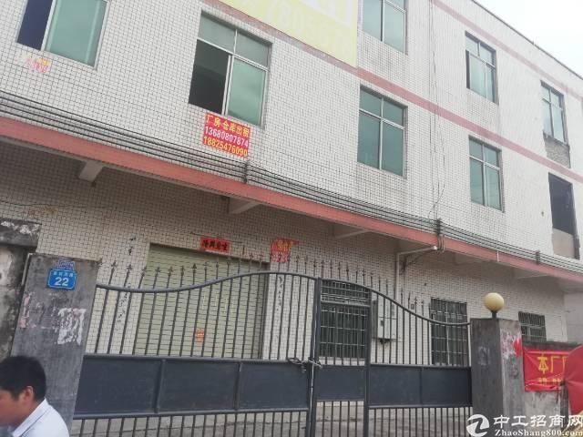 惠州小金口工业区旁独院650平标准厂房出租!