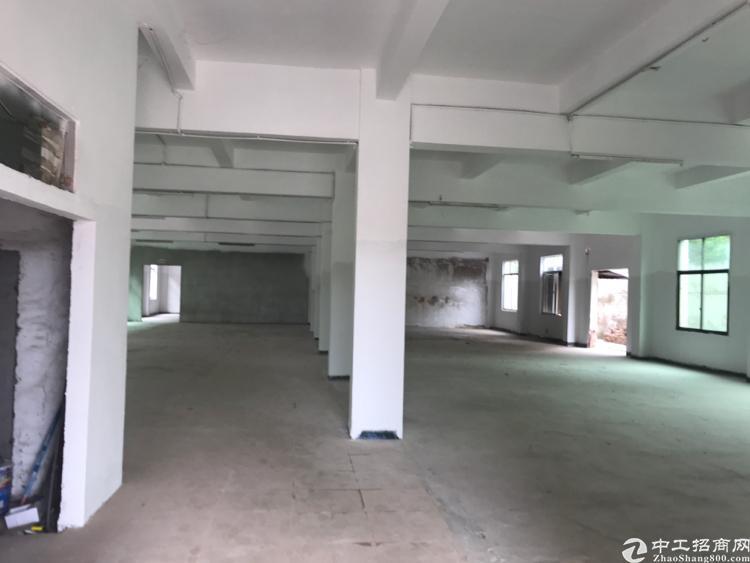 惠州市潼侨镇独门独院厂房出租全市最低价见客即租