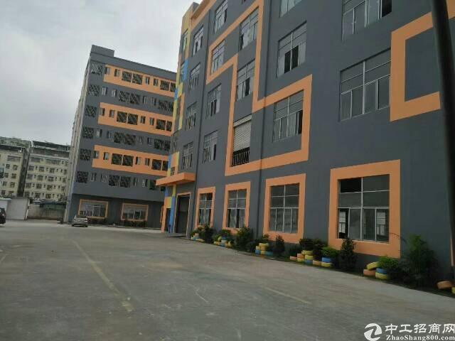 观澜龙光快线旁新出原房东一楼六米高厂房,1000平方。