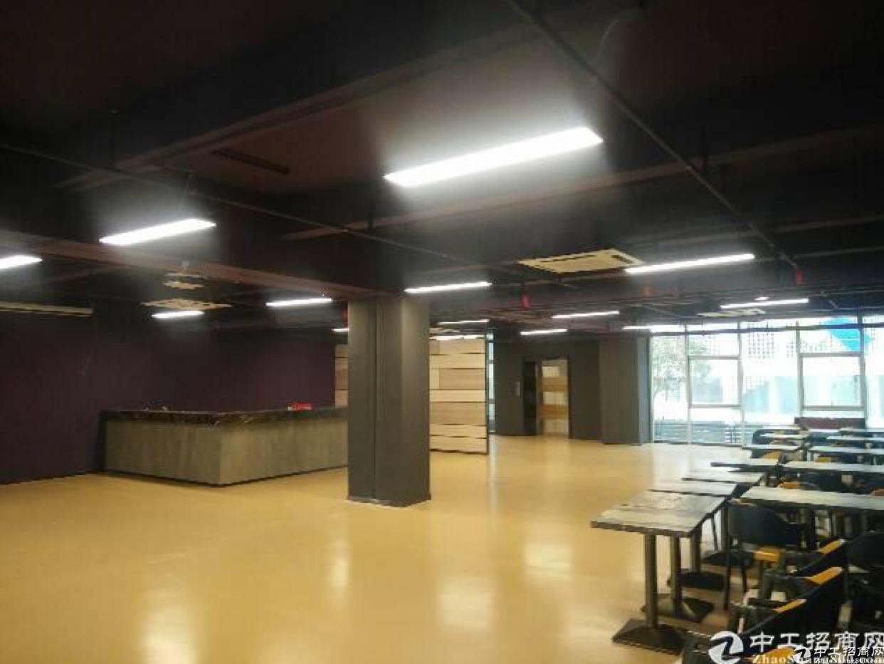 布吉南岭青年创客中心208平出租