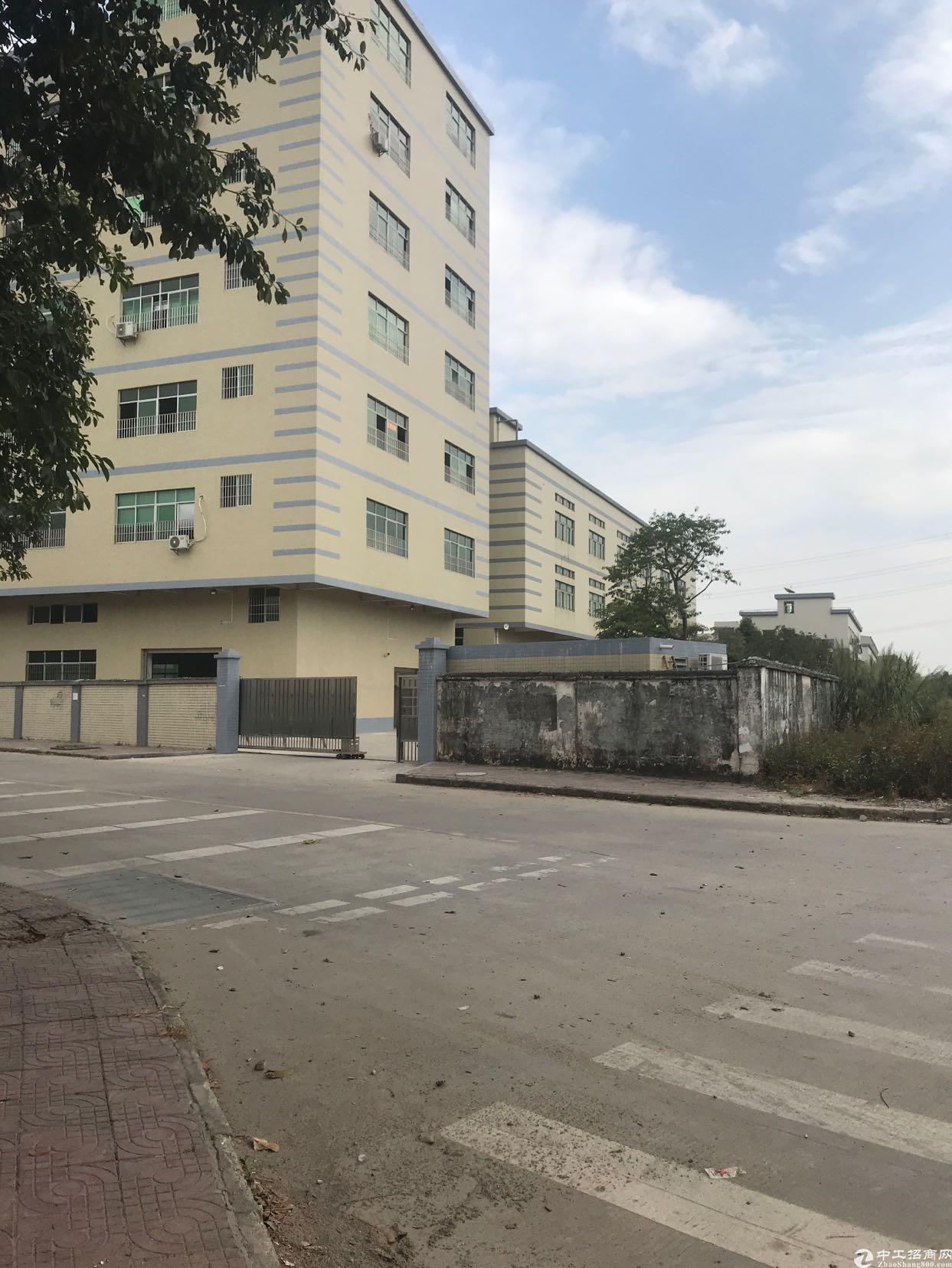 东莞常平厂房9000平方出售