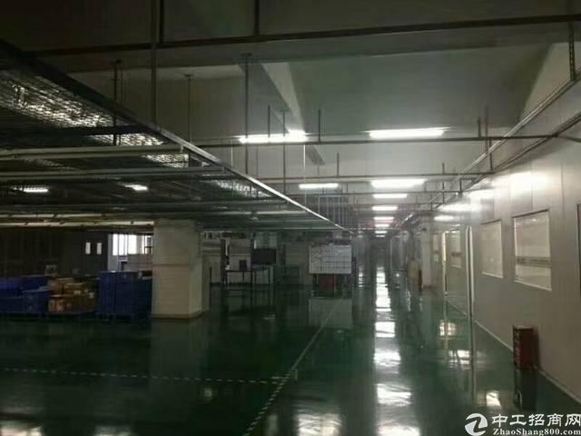 雁田新出楼上3600平方无尘车间,三台2吨货梯