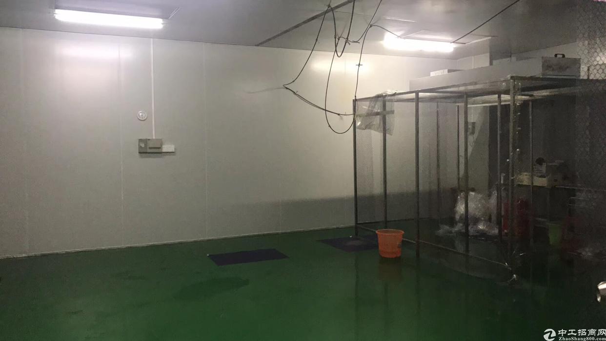 福永107国道旁新出500平带无尘车间精装修无转让费厂房出租