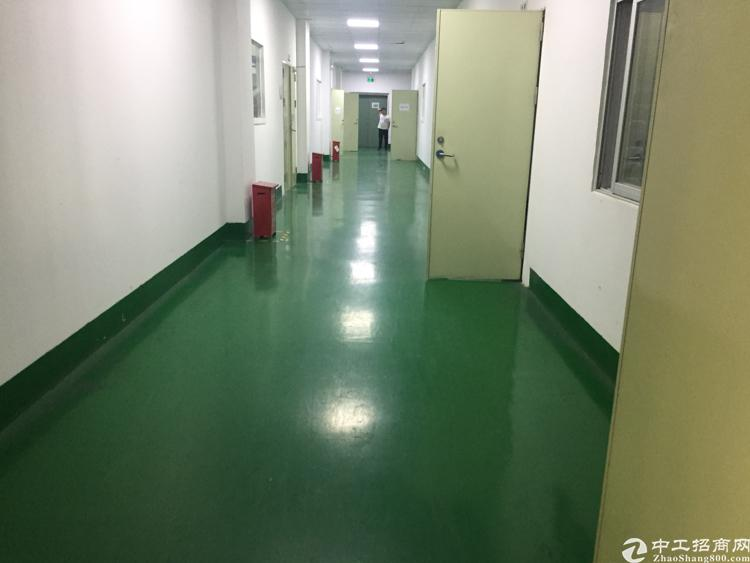 沙井新出楼上厂房 一千六百平带全新地坪漆空地超大