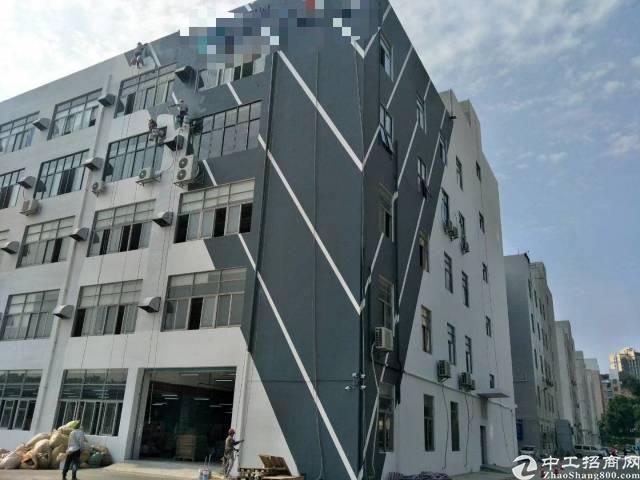 坂田500平红本带消防喷淋卸货平台5吨货梯厂房招租可分租