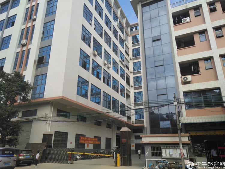 大岭山杨屋新出二楼带豪华装修适合各种电子客户欢迎电话咨询