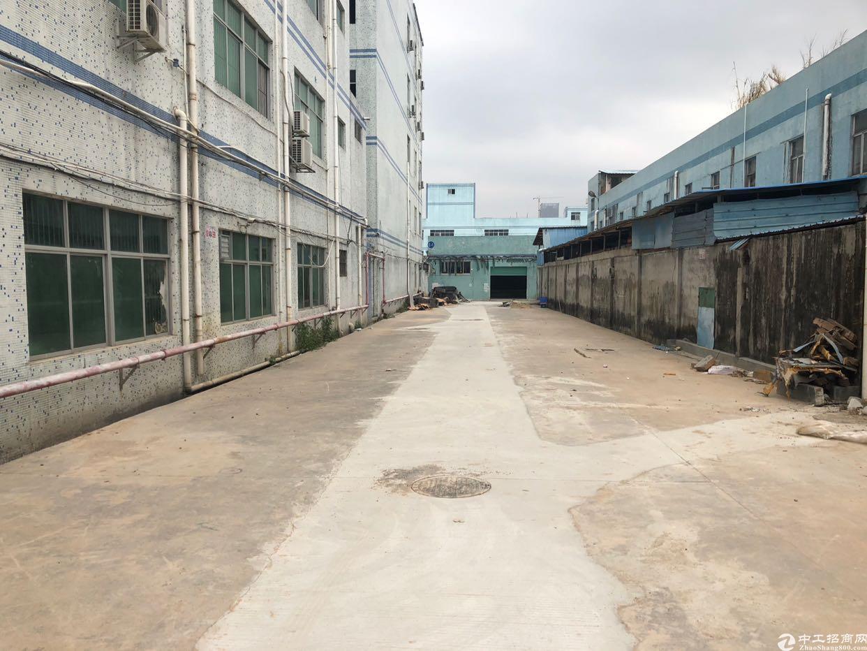 龙岗,原房东大型工业园区,独院,面积4000平方米