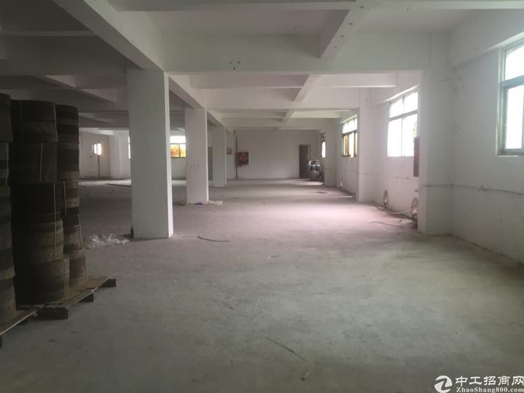 坑梓三楼800平米标准厂房招租 有电梯原房东