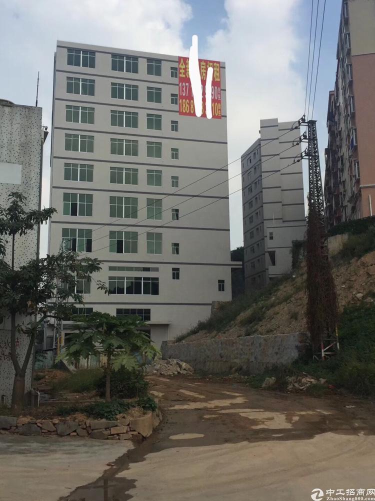 凤岗新出原房东独门独院全新厂房面积约为26950平