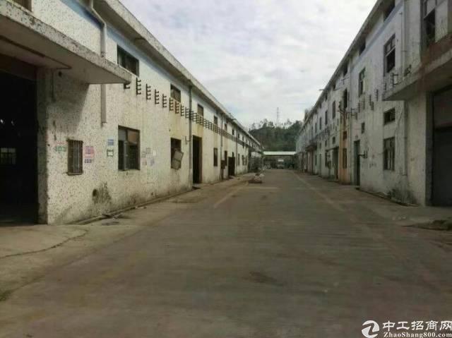 龙岗坪地高速路口附近独栋钢构厂房2500平米16元出租