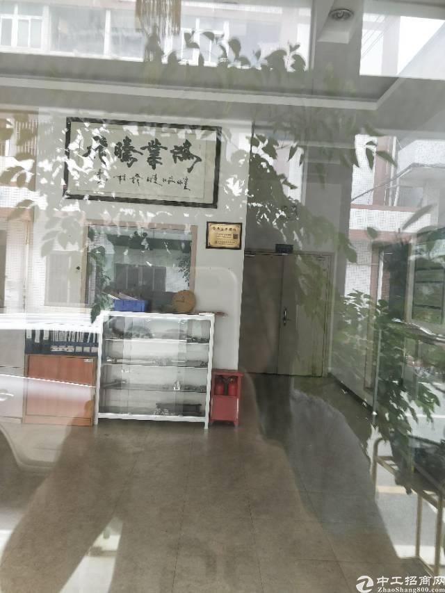 松岗龙大高速出口附近新出原房东1楼1200平方米带装修办公室