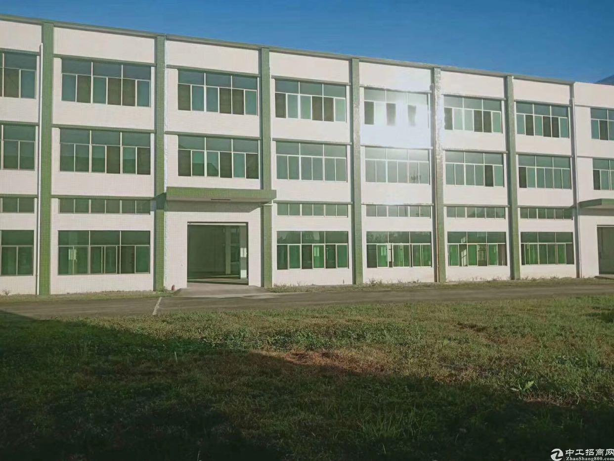 西乡原房东厂房总面积65575平方大小分租