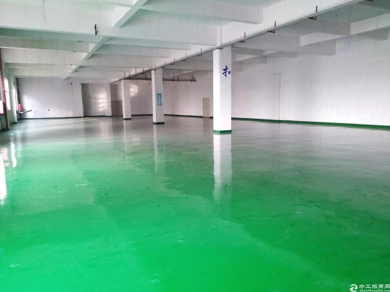 松岗新出楼上带地坪漆全新厂房