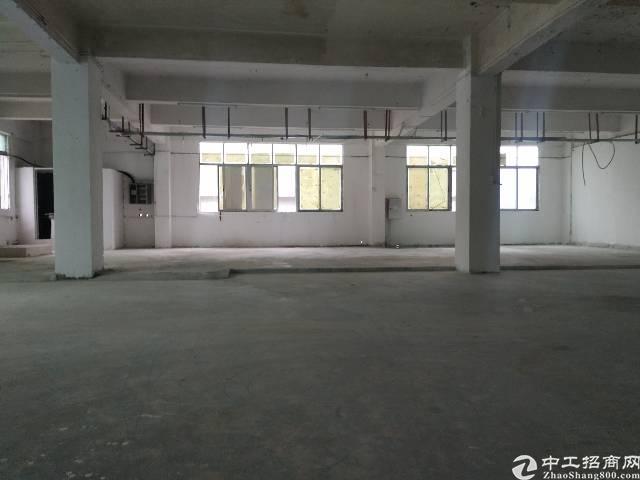 公明镇长圳村新出3楼537平价格实惠