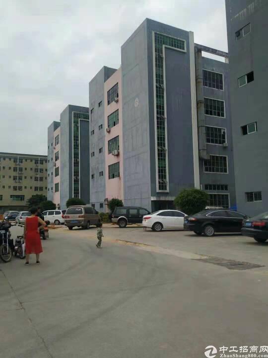 公明楼村3楼750平米带办公室装修厂房出租
