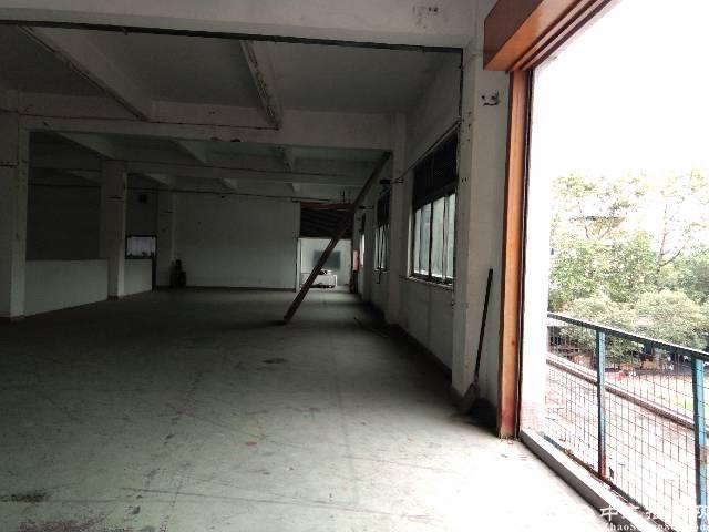 松岗红本一楼1280平厂房出租