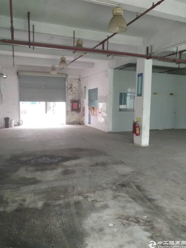 松岗东方新出一楼500㎡带装修厂房