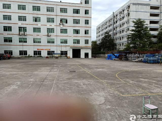 (出租)龙岗一楼1500平方出租,高度6米