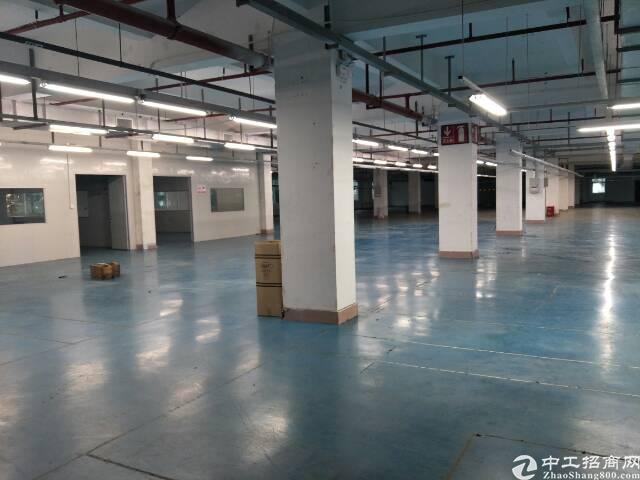 石碣新出工业园区标准厂房分租三楼