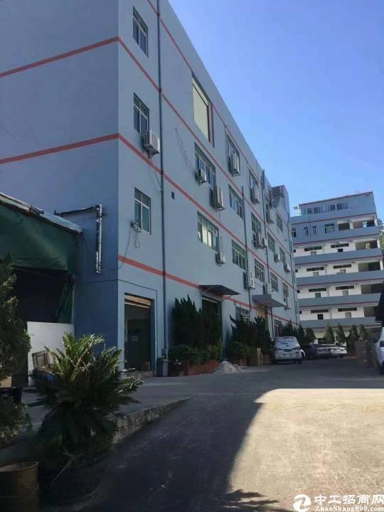 坂田上雪东区二楼厂房出租800平米,实用9成