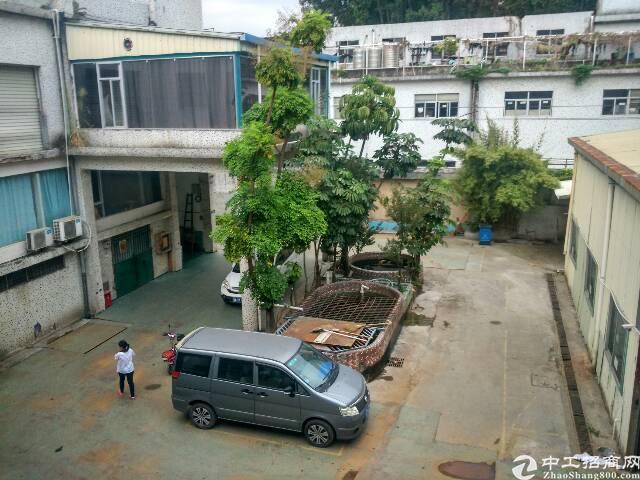 水田一楼6米高钢构280平米厂房出租