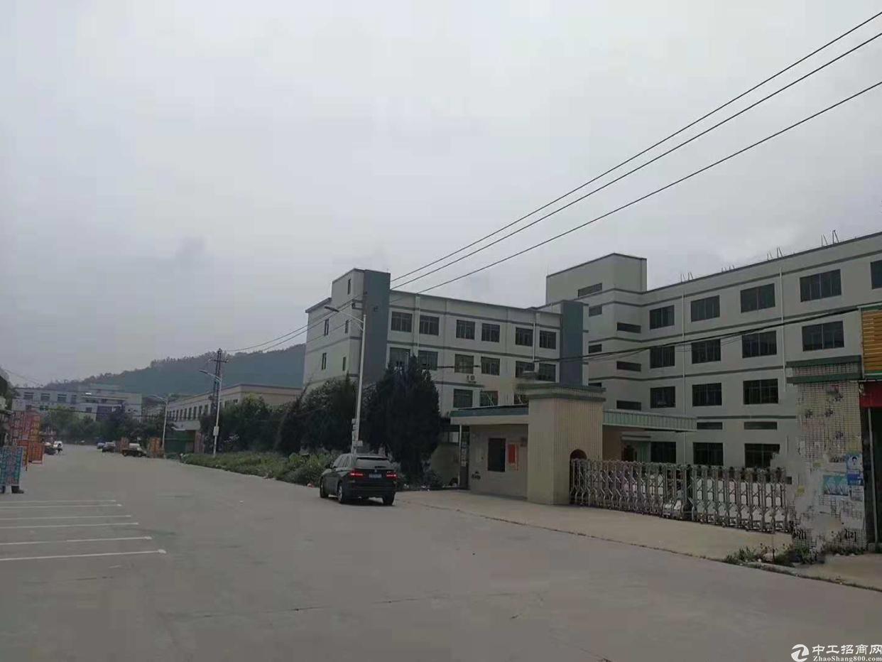 惠阳区新墟占地面积5000平方米厂房出售
