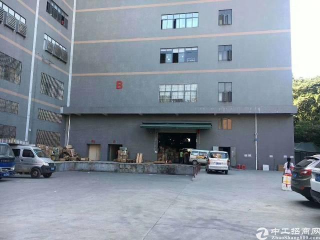 凤岗镇雁田新出带办公室、地坪漆标准厂房5楼1350平