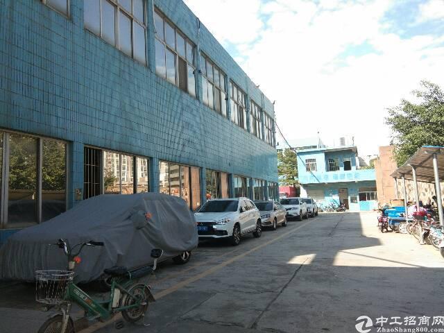 观澜福民新出一楼446平,高5米