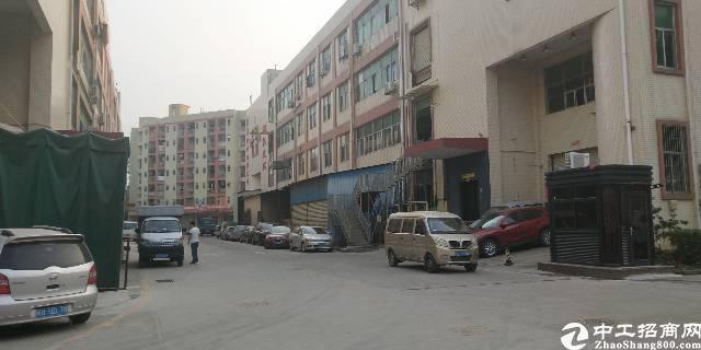 布吉丹竹头地铁口新出楼上2300平厂房出租可分租