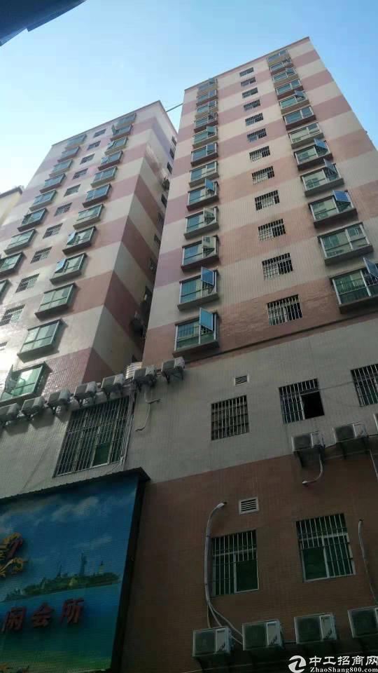 观澜公寓包租,证件齐,lO年合同