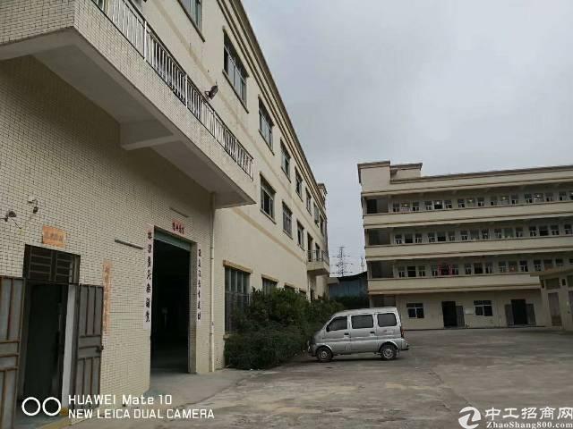 大岭山镇杨屋村新出楼上900平,带装修