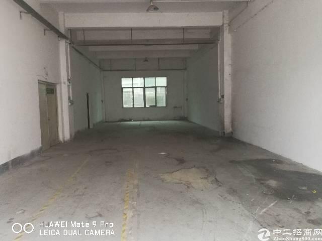 观澜松元新出一楼厂房300平方带装修办公室,水电到位